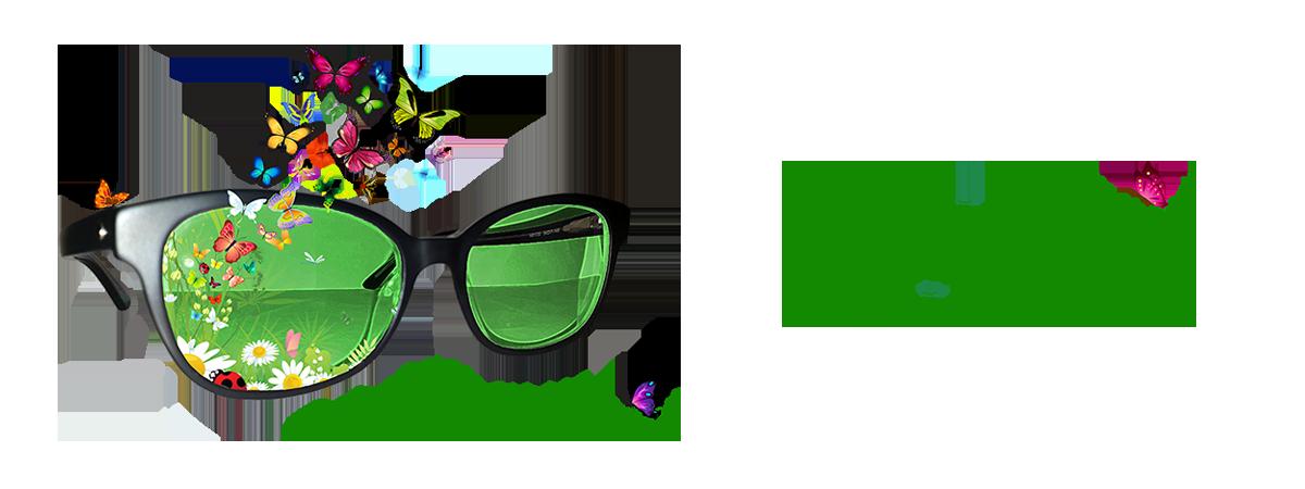Ochelarii Cu Vedere