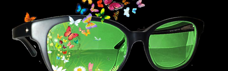 Fluturi Ochelari 2000×1200 RGB