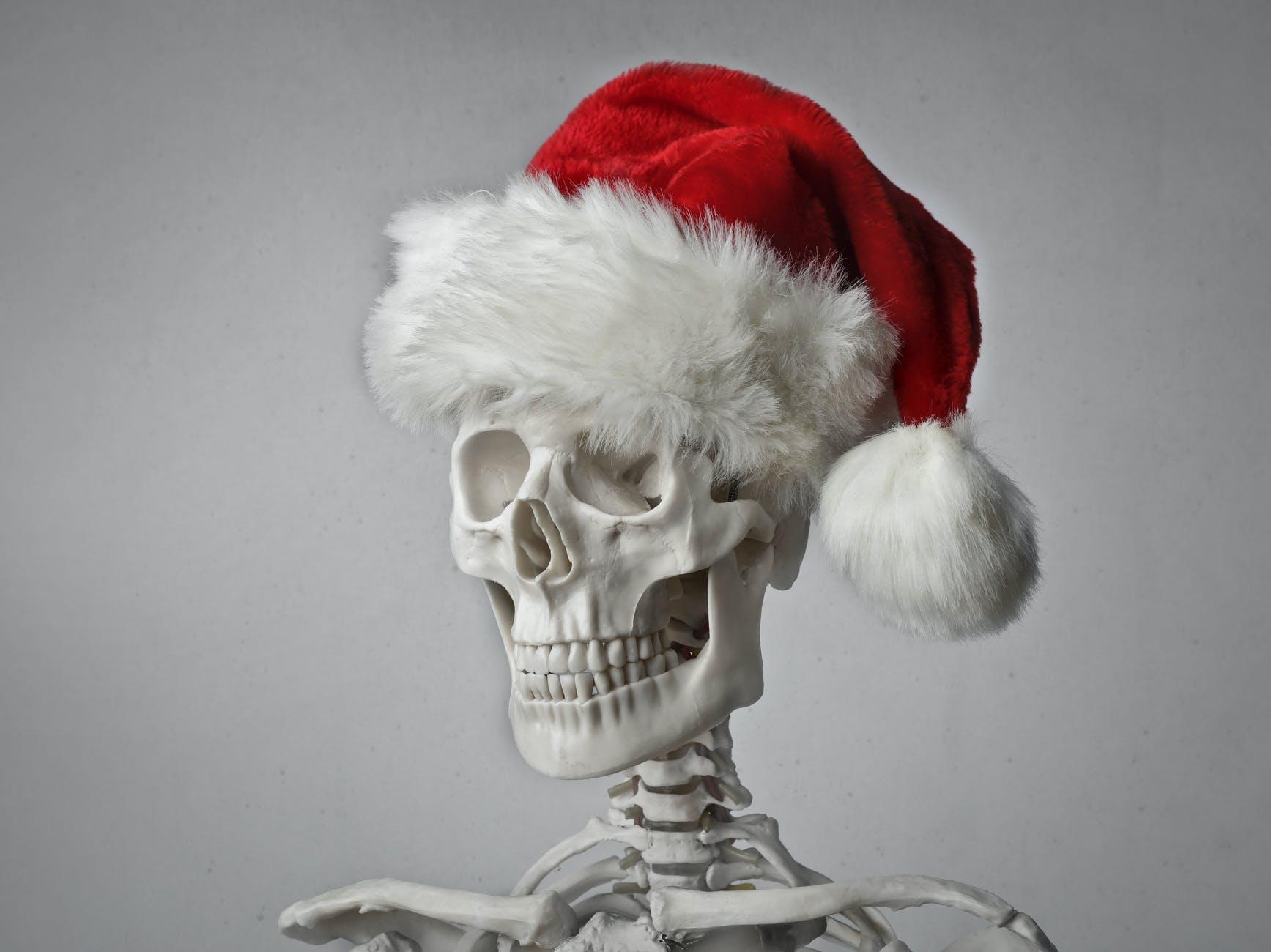 portrait photo of a skeleton in a santa hat on